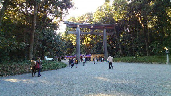 Huge Torii gate of Meiji Shrine
