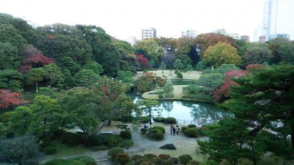 Beautiful view of Rikugien Garden. Late November to early December is the best season for viewing colored leaves.