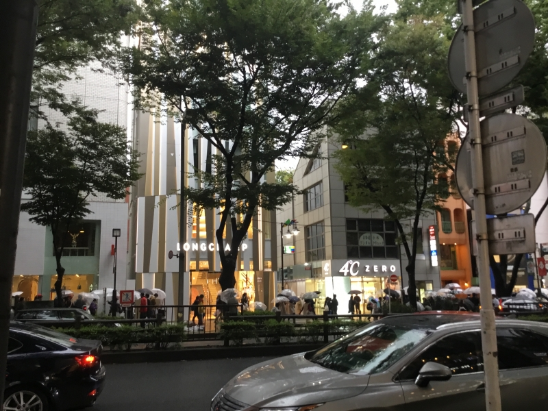 Omotesando street to see fashionable street for young adults and to enjoy shopping and feel the sophisticated atmosphere