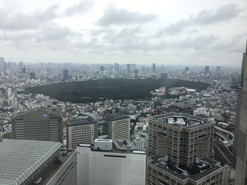 Overview of Tokyo including Mt.Fuji in the distance if whether is fine from the observatory of Tokyo Metropolitan Government Building