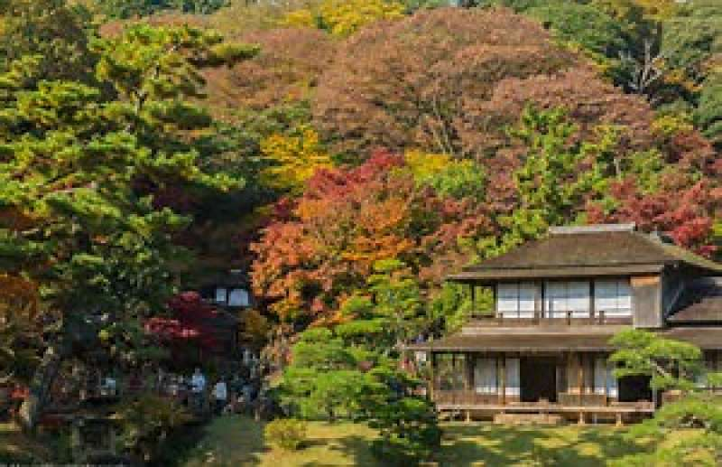 10.Sankeien Garden, where you will meet the beautiful color of four seasons and historic charm