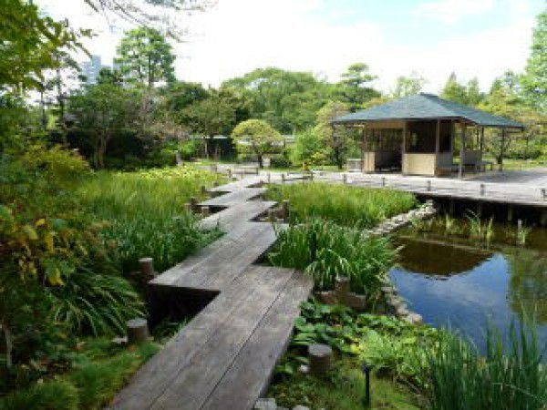 Momijiyama Garden In the Sumpu Castle Park