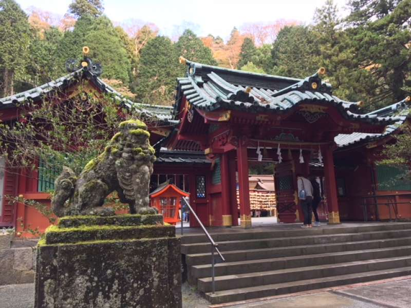 Hakone Shrine where you can feel strong natural power
