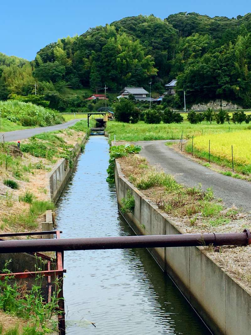 Small canal for rice fileds