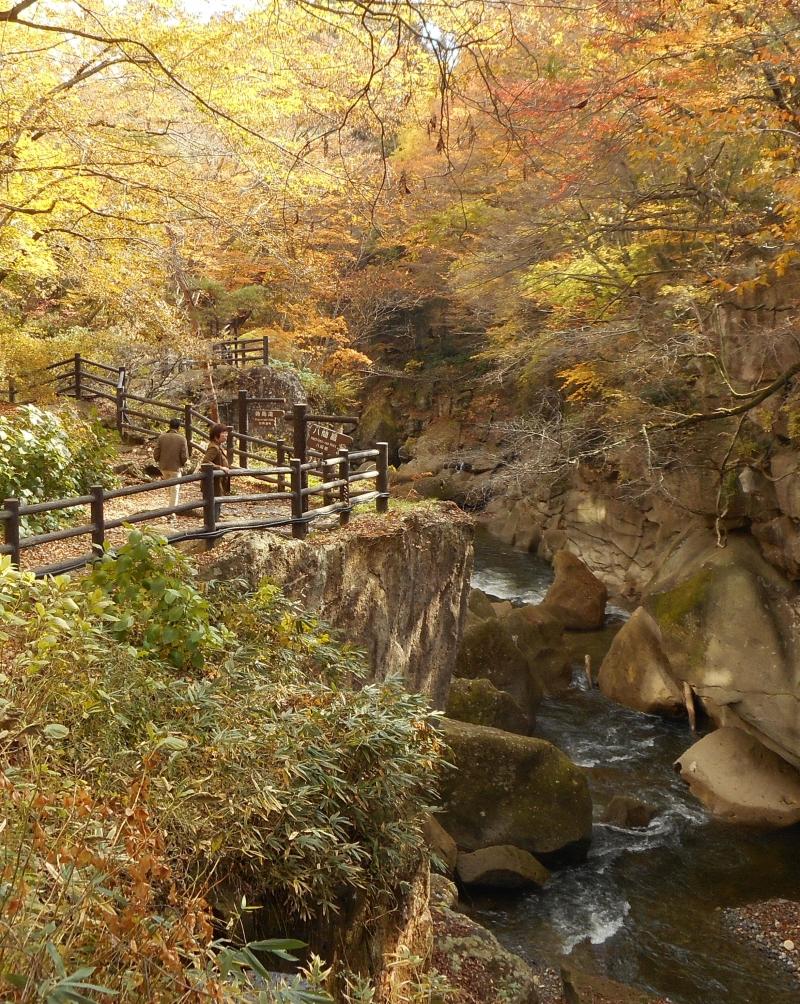 You can walk on a path along Rairaikyo Gorge.