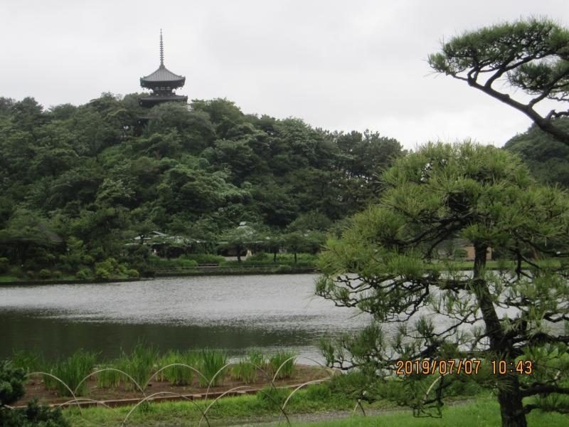 Sankei-en Garden: Silk trader, Sakei, built this park in 19th century.