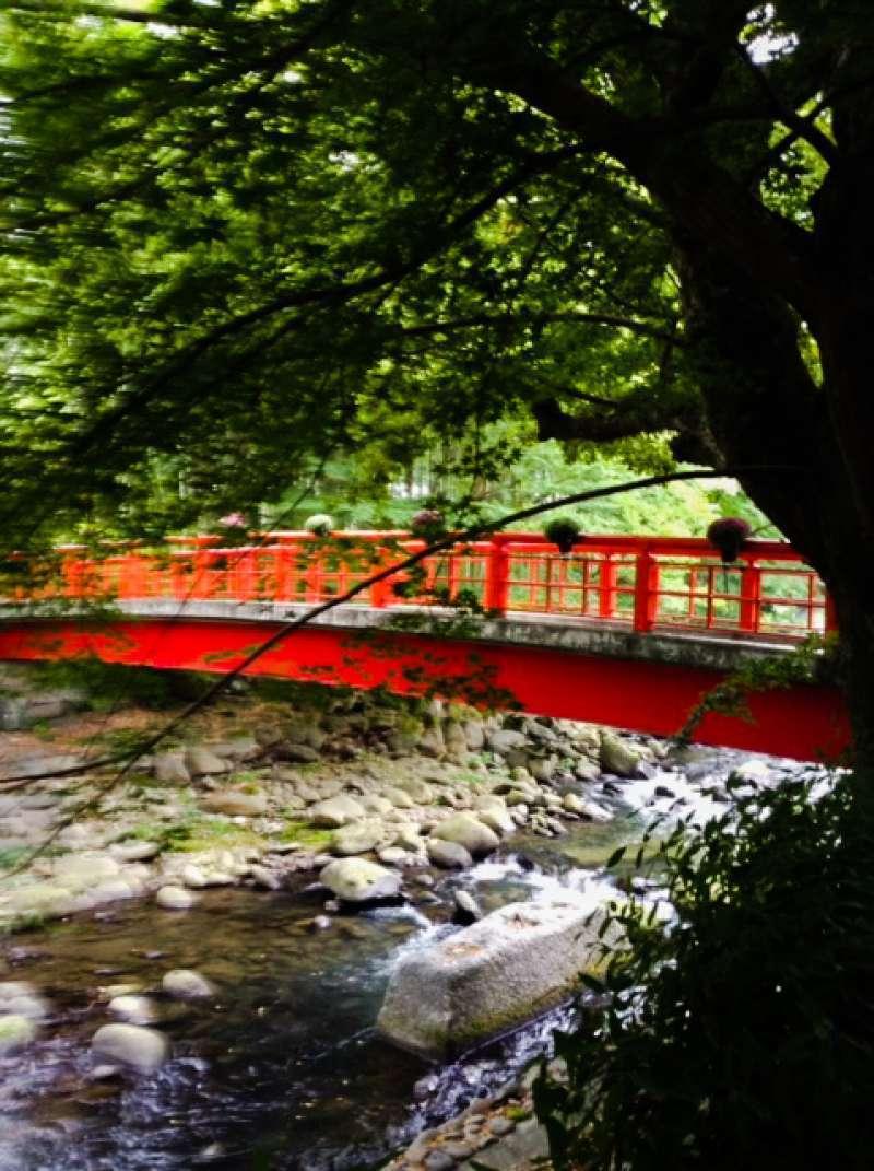 beautiful Town of Shuzenji