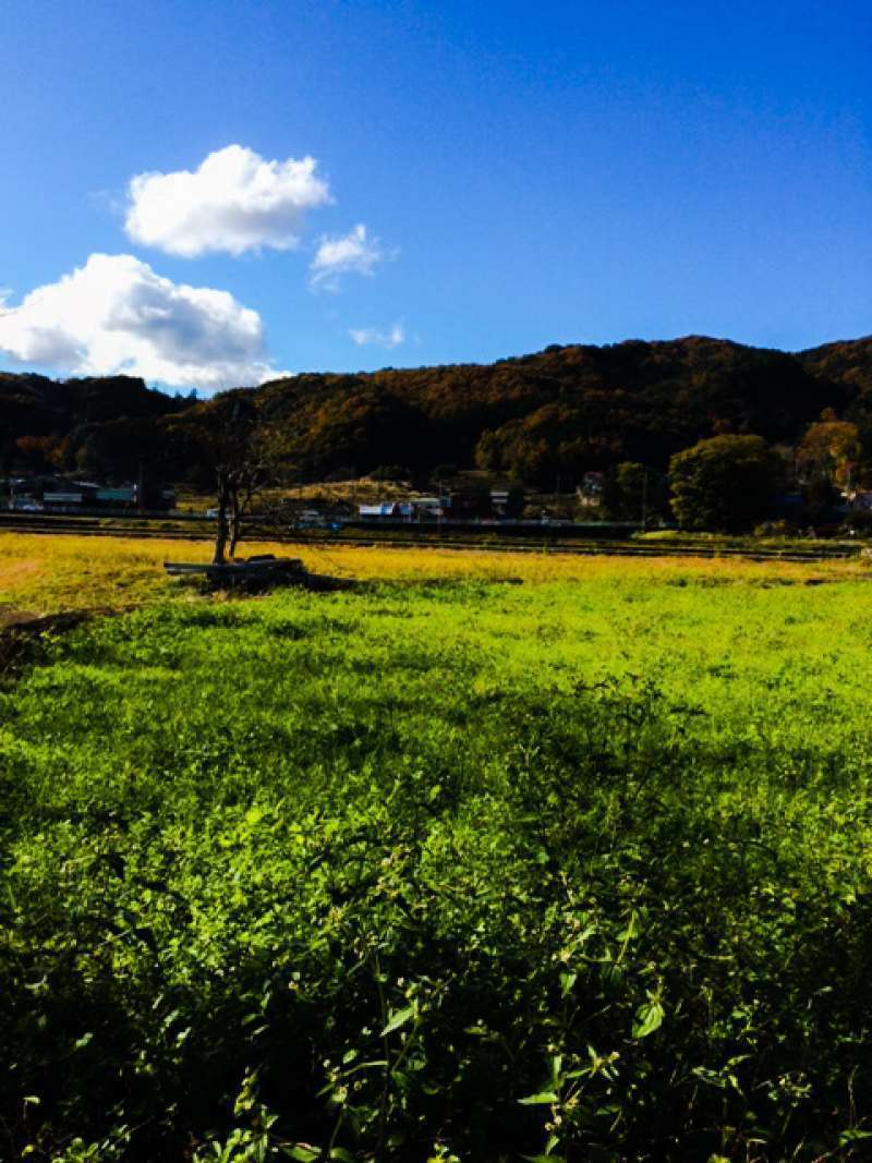 peaceful landscape of Shuzenji