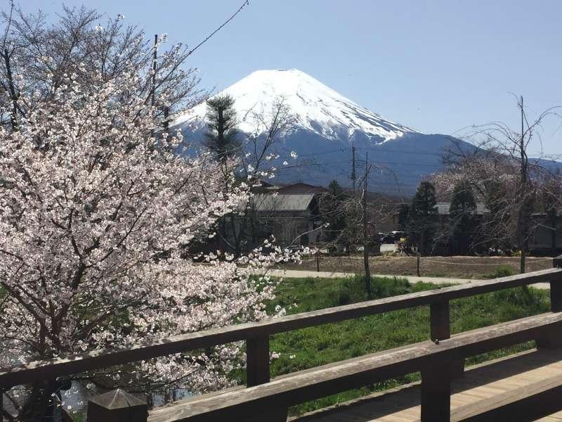 Mt. Fuji seen from Oshino Hakkai