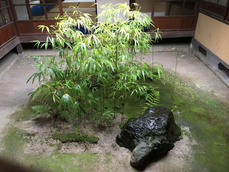 Tsuboniwa or court-yard garden