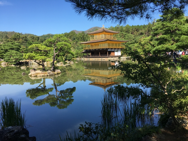 Kinkakuji temple, also known as the golden pavilion