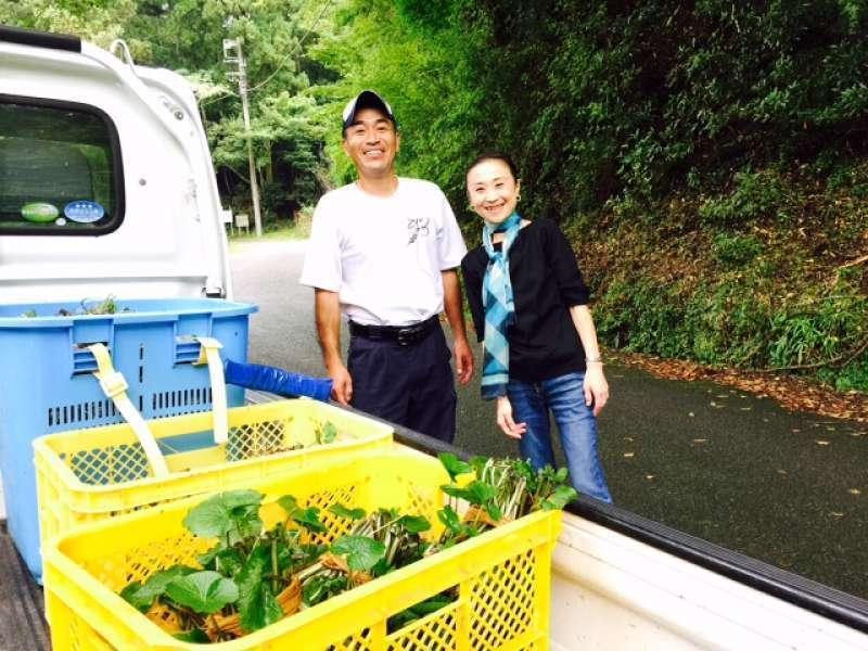 wasabi farmer