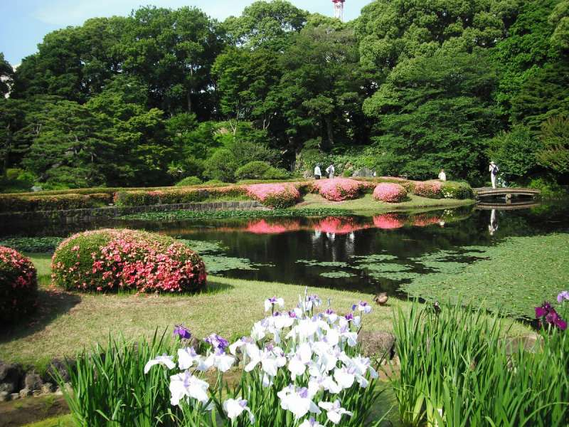 Various type of flowers, tree and ponds inside Imperial Palace East Garden
