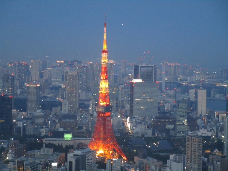 The view from the Sky Deck of Tokyo City View
