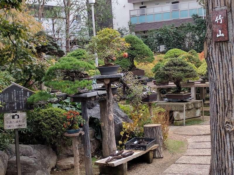 'Fuyouen'  private bonsai garden in the bonsai village.
