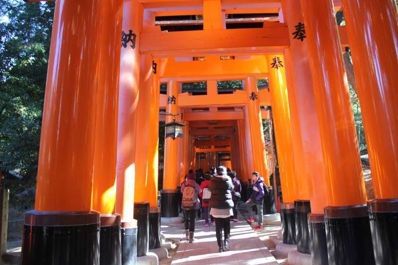 The entrance gate of Torii.