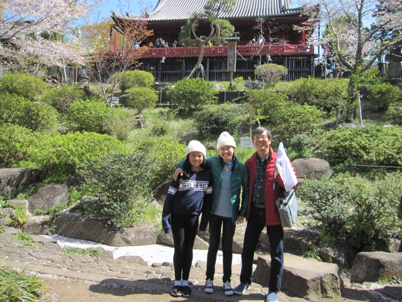 Ueno Park:The largest park in Tokyo. In spring it is also famous for its Hanami party.