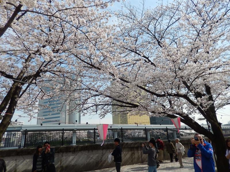 Sumida park near Asakusa