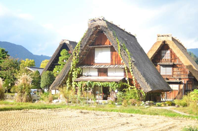 Thatched roof houses in Shirakawa-go.