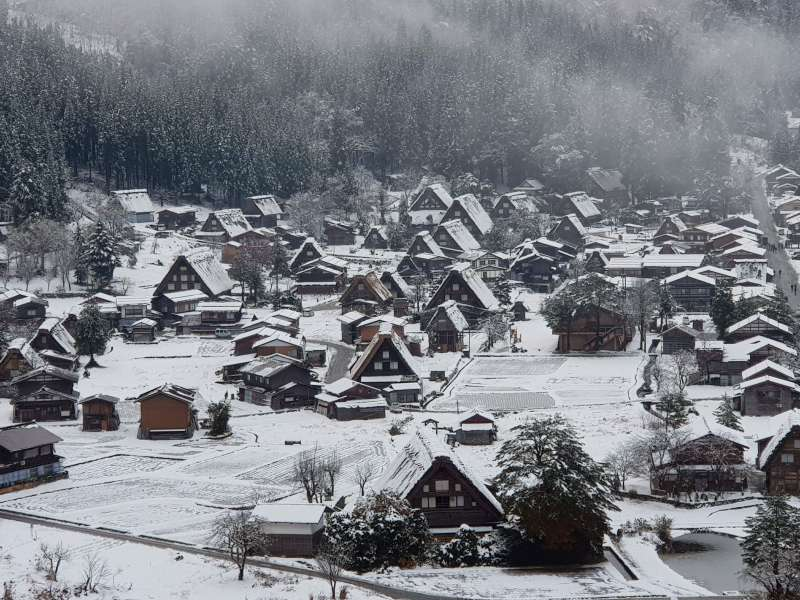 Shirakawago village ( from the observatory )