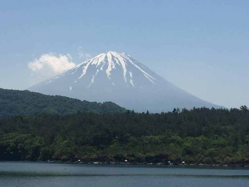 Mt. Fuji and Lave Saiko at Nenba Hama