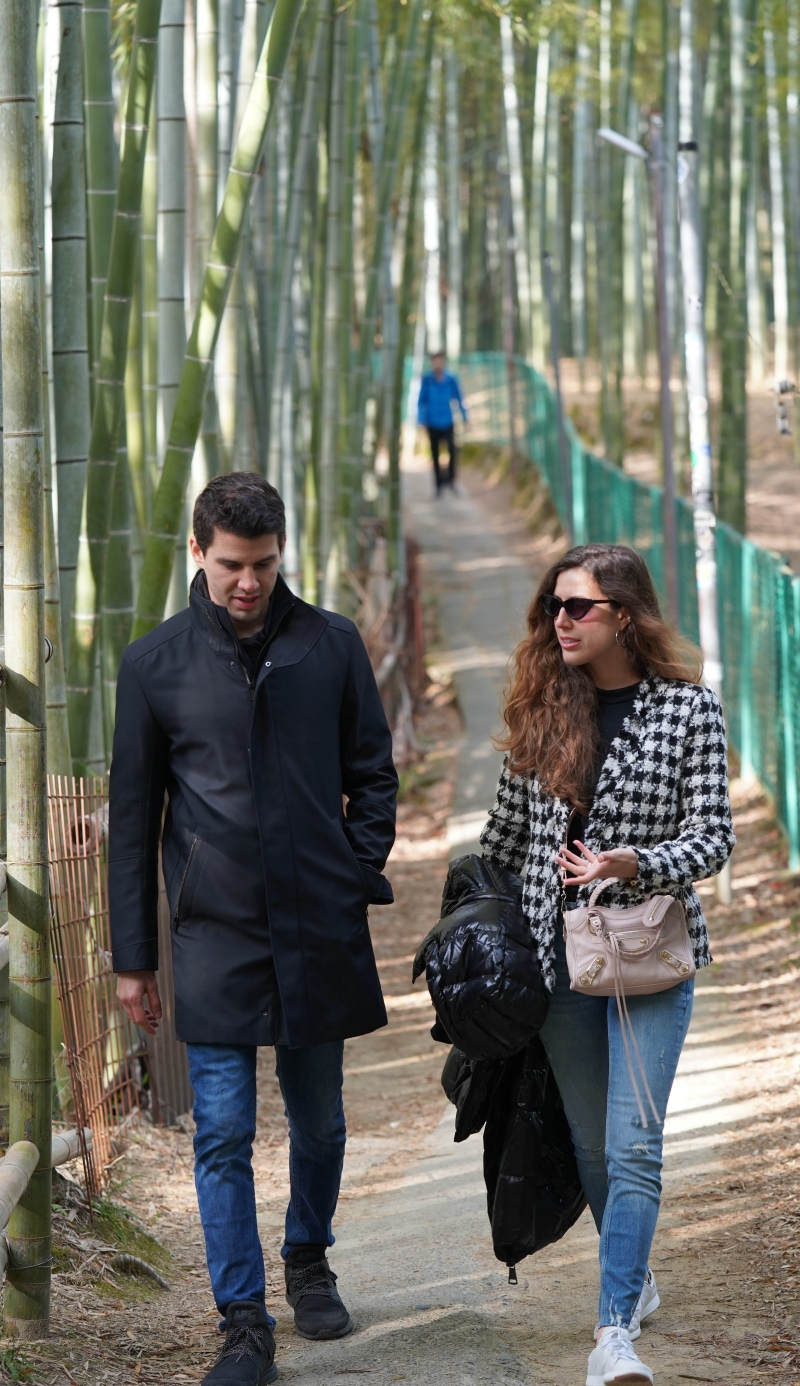 Hidden bamboo path