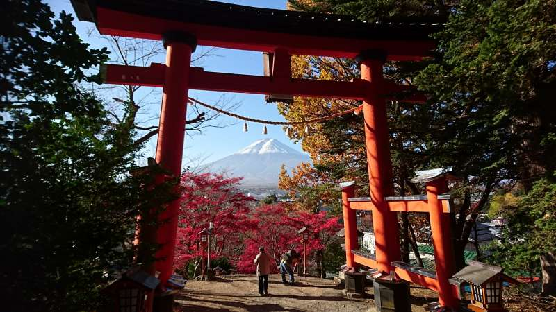 Mt. Fuji through Torii Shinto shrine gate.