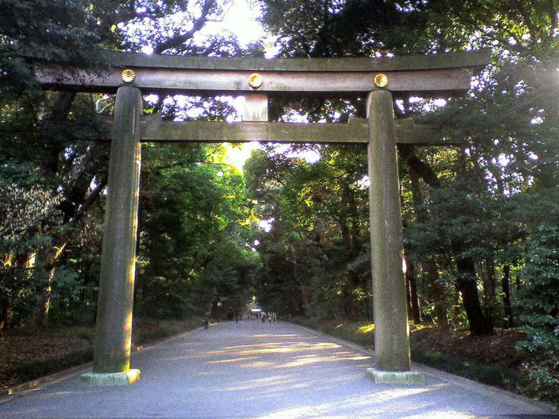 1. Tokyo route: Meiji Shrine surrounded by a forest where you can feel its sacred atmosphere of Japan (Admission free )
