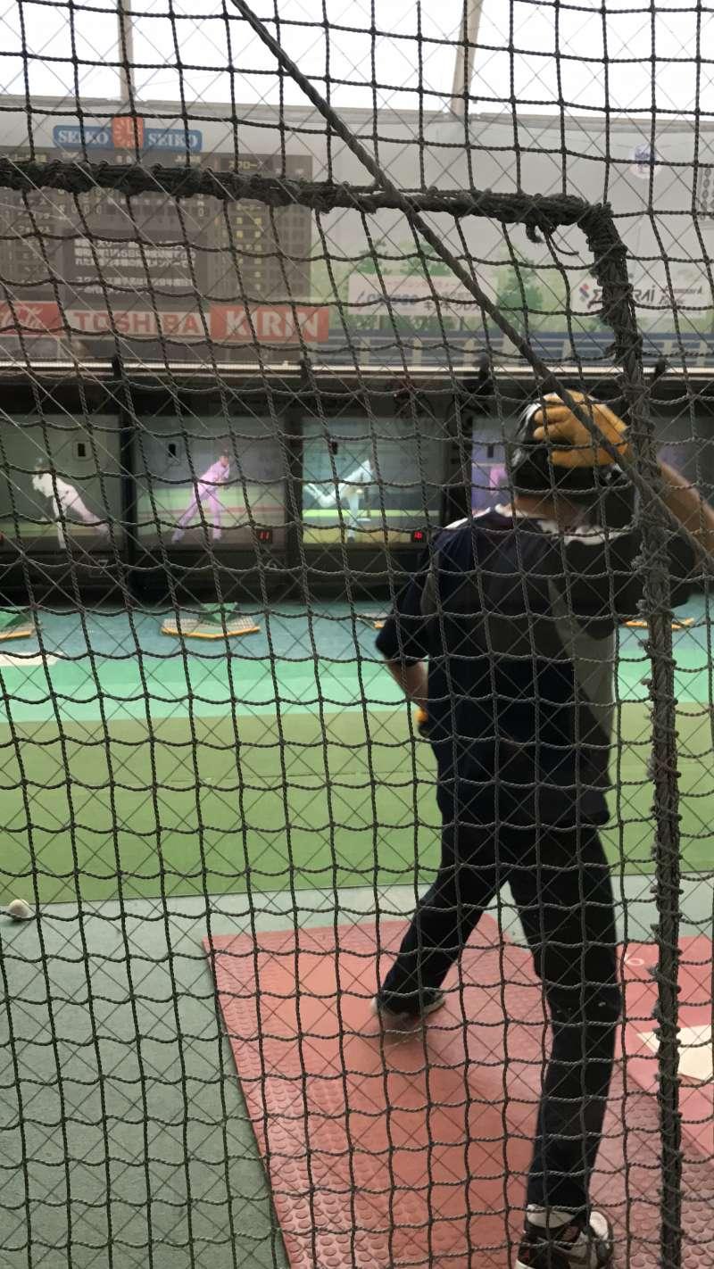 Meiji Jingu Stadium batting cage