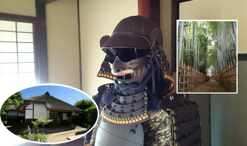 Tour of  Samurai town good for stopover tourists in Narita Airport !!