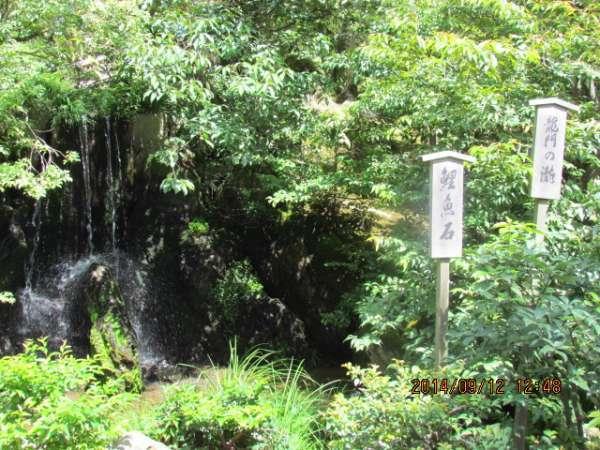 Ryumon water fall at Kinkakuji Temple