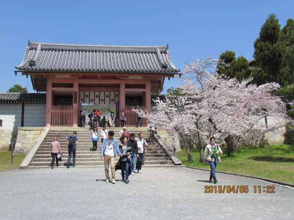 Niomon Gate at Ninnaji Temple