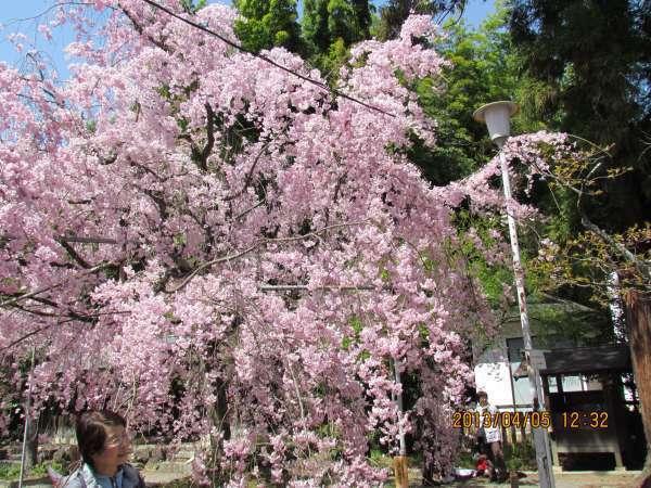 Hirano Shrine