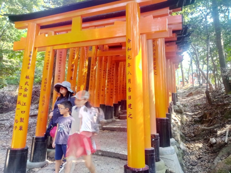 Fushimi Inari shrine / torii gates