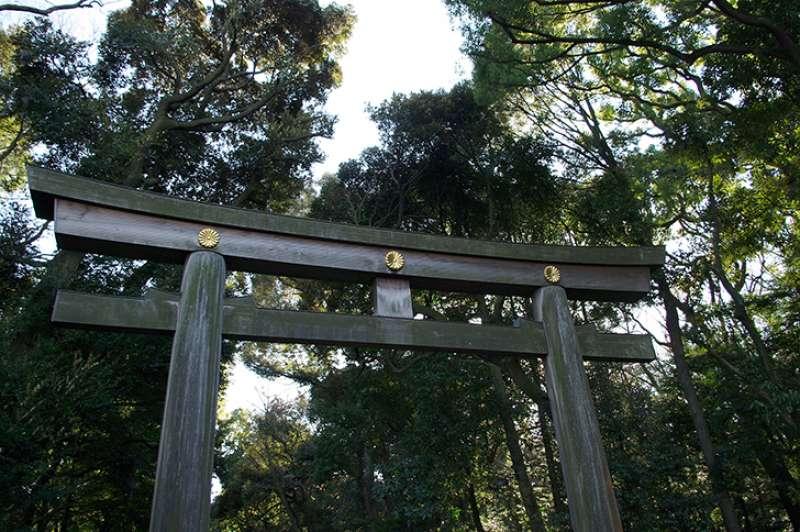 The south gate of Meiji Jingu shrine