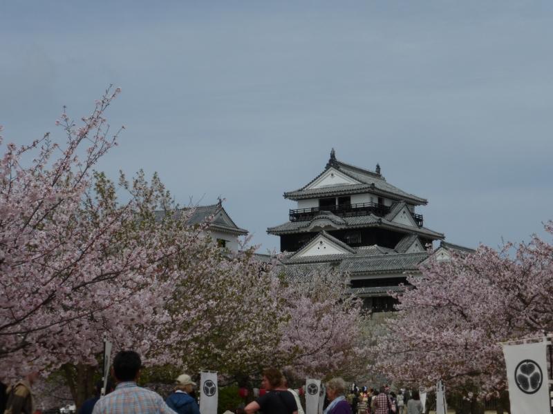 Matsuyama Castle keep in spring.