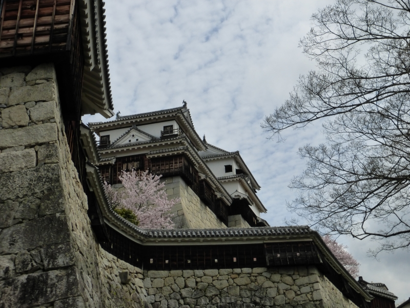 Matsuyama Castle from the angle of Inui turret.