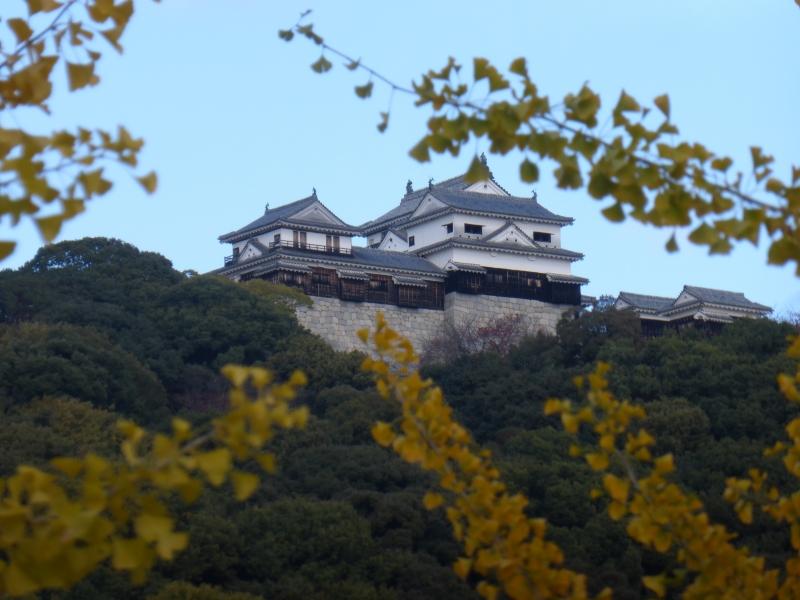 Matsuyama Castle keep in autumn.