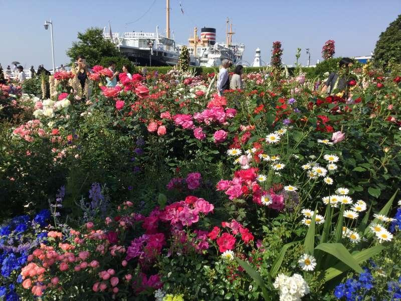 Yamashita park, flower garden along the Yokohama Bay