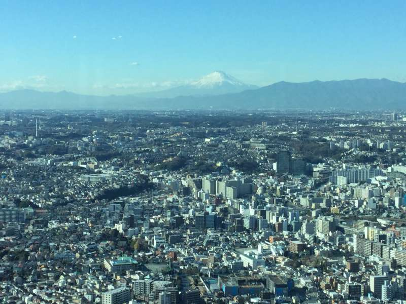 Landmark Tower, you can see a distant view of Mt. Fuji on a clear day.