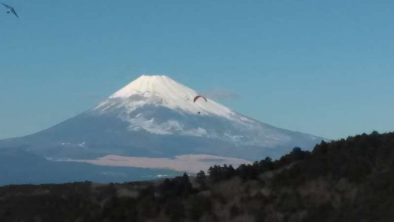 Snowcapped Mt. Fuji in winter from a hilltop