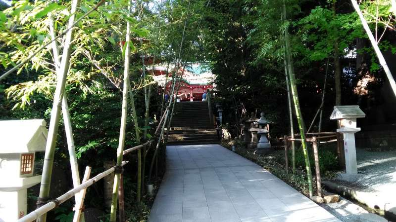 Kinomiya Shrine is a popular spot flowing with mystical energy