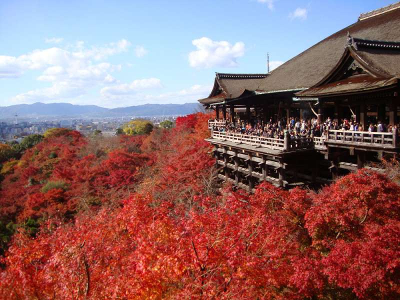What a nice view !! One of the Kyoto's most famous temples !