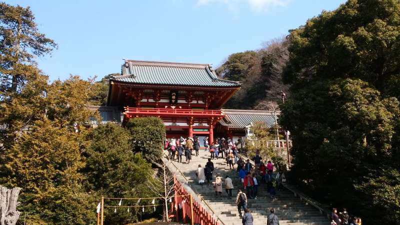 Turugaoka- Hachimangu shrine sits in the center of Kamakura.