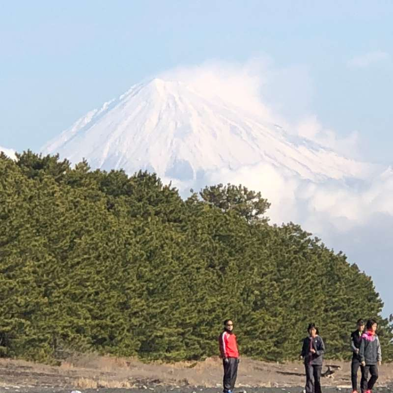 Mt. Fuji and Pine Tree Grove at Mino no Matsubara! You can enjoy not only the splendid view of Mt. Fuji but also the attractive contrast among snow-covered Mt. Fuji, green pine trees, and blue ocean.