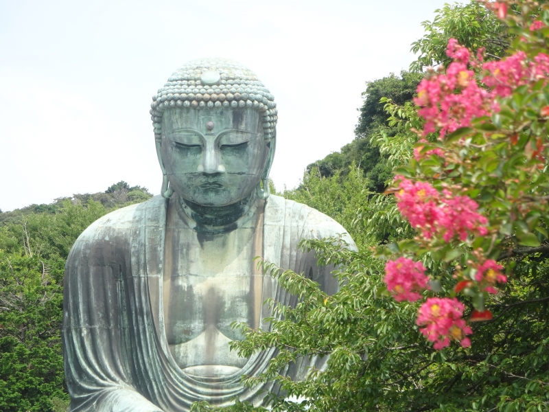 Kamakura is a place of experiencing Japanese culture and tradition. Great Buddha of Kamakura is the symbol of Kamakura.