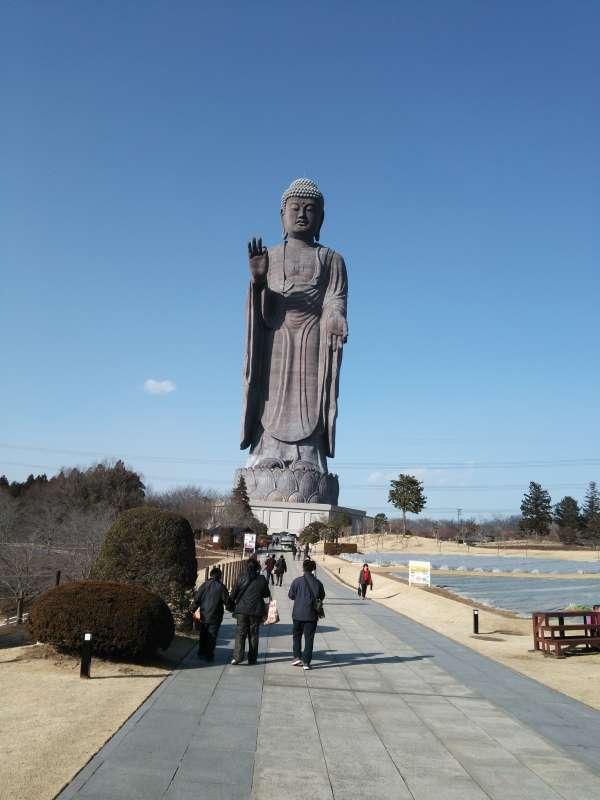 Ushiku Daibutsu from the main gate.