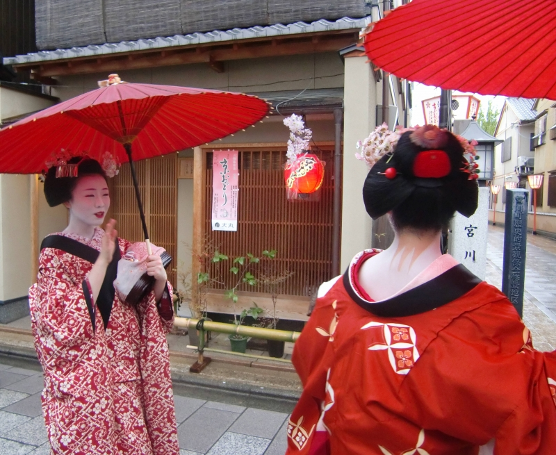 If you are lucky, you can take a good picture close to Maiko.