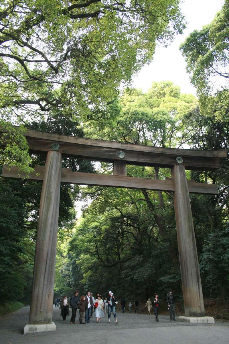 The Southern Entrance of Wooden Myojin Torii in Meiji Shrine