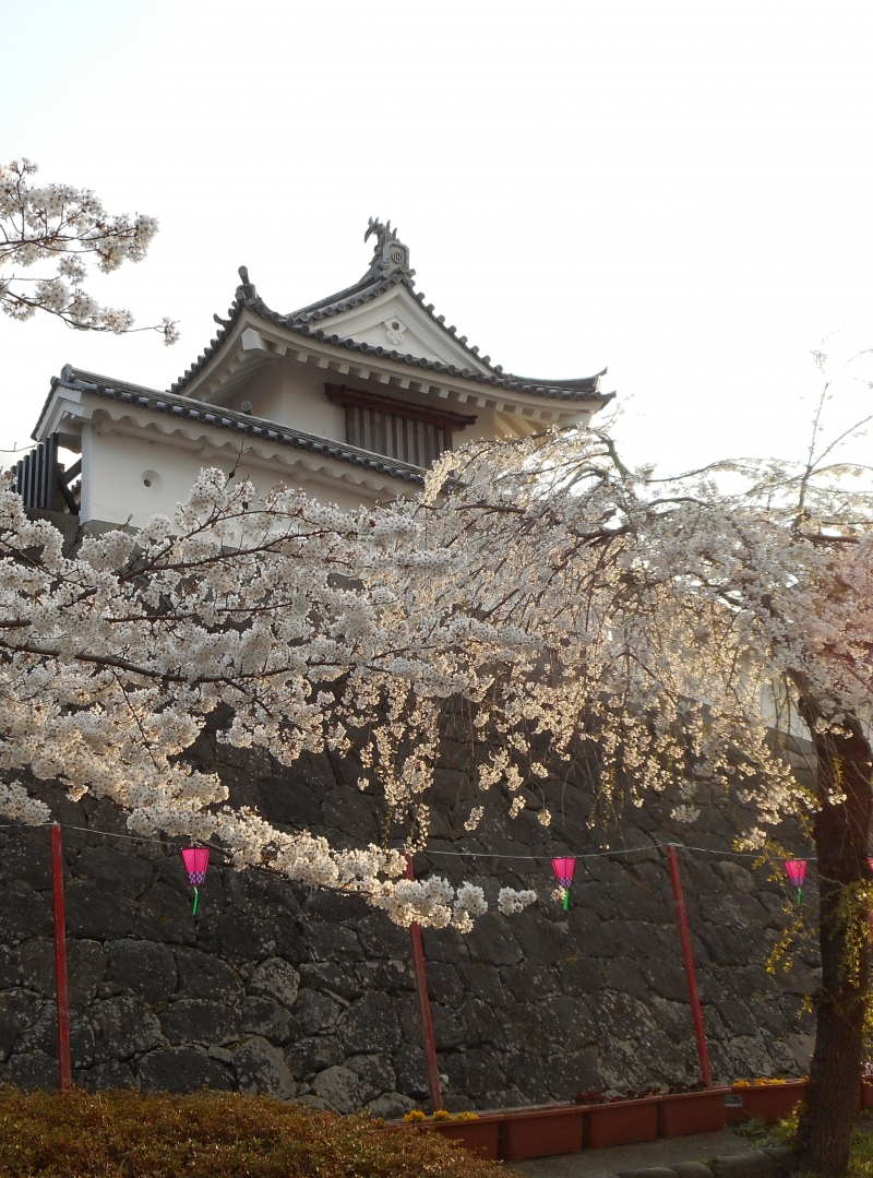 Shiroishi Castle in the evening.